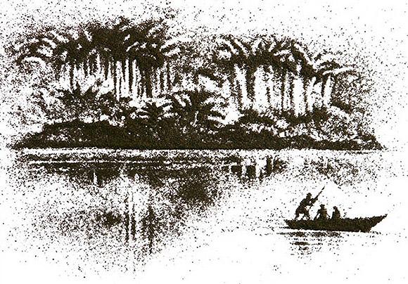 Ilustrações feitas com chá. (14)